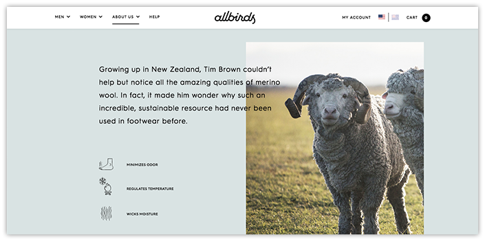 AllBirds.com Homepage